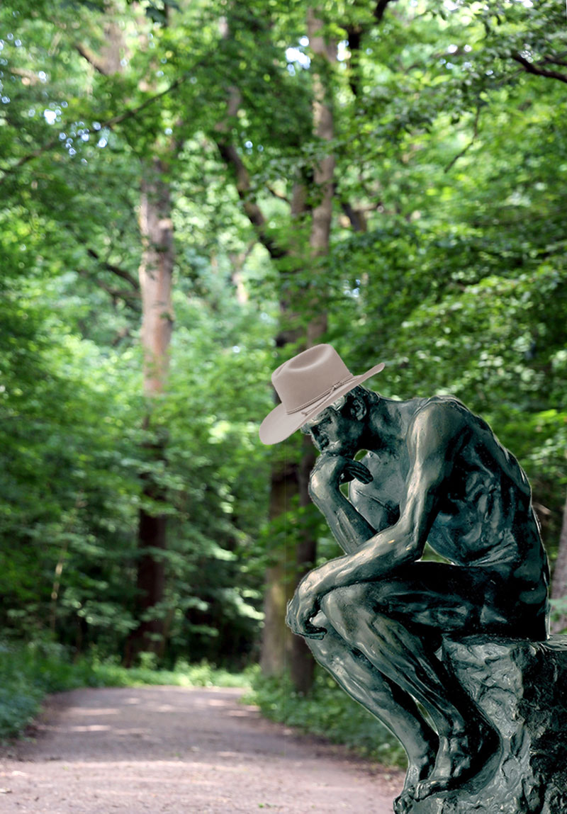 icr_cowboy_forest