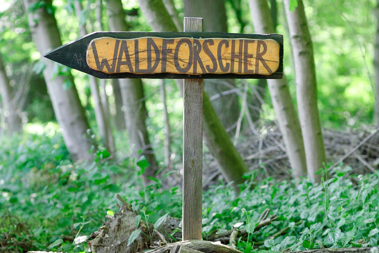 Waldforscher Schild - Wegweiser